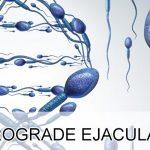 Wat Is Retrograde Ejaculatie? 4 Oorzaken en 2 Oplossingen
